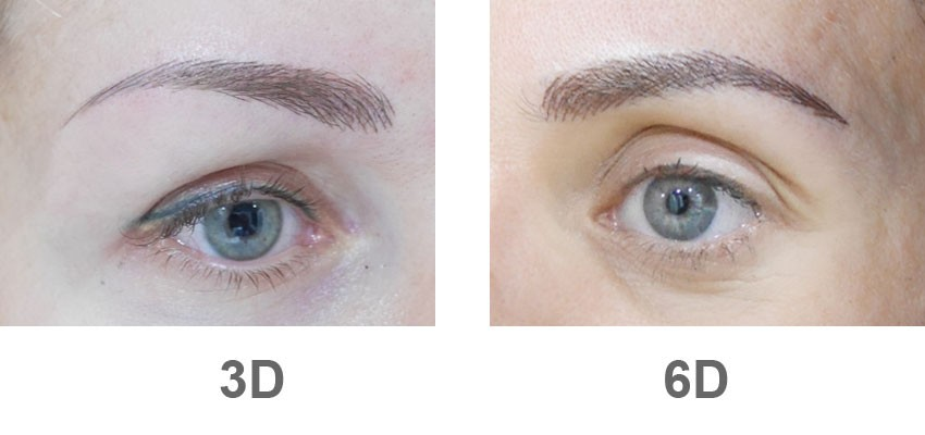 3d Vs 6d Microblading Get The Difference Elivestory