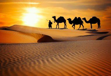 Jaisalmer Beyond Desert