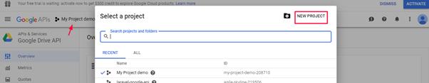 Getting Google Drive API
